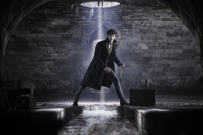 Fantastic Beasts: The Crimes Of Grindelwald - Image - Image 5
