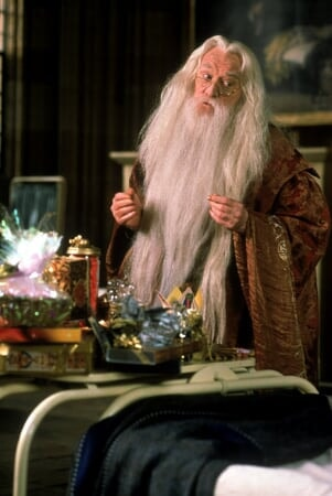 Harry Potter and the Sorcerer's Stone: Extended Version - Image - Image 3