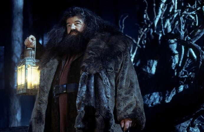 Harry Potter and the Sorcerer's Stone: Extended Version - Image - Image 5
