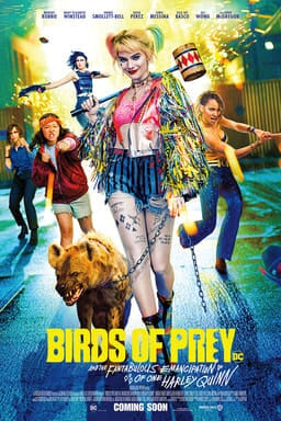Birds Of Prey And The Fantabulous Emancipation Of One Harley Quinn - Key Art